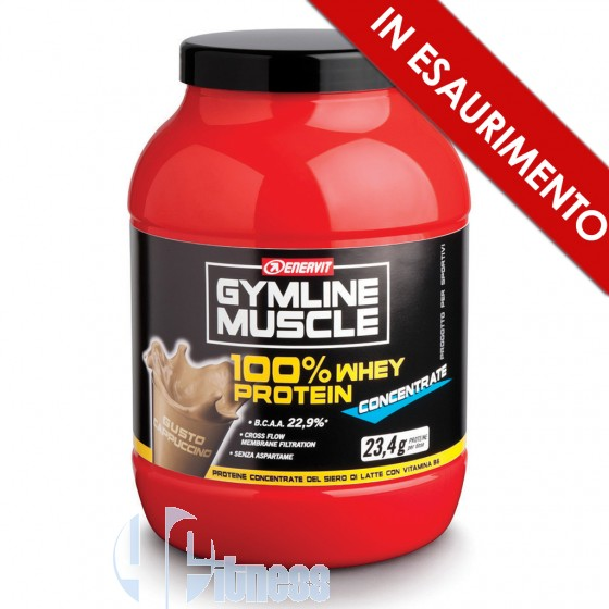 Enervit Gymline 100% Whey Protein Concentrate Proteine del Latte