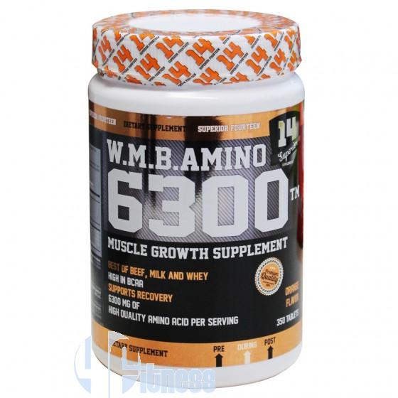 AMINO 6300 350 CPR