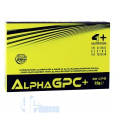 4+ NUTRITION ALPHA GPC+ 30 CPS