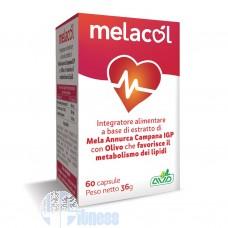 AVD MELACOL 60 CPS