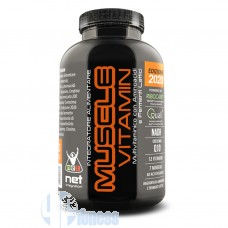 NET MUSCLE VITAMIN 2020 120 CPR