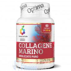 OPTIMA COLLAGENE MARINO 60 CPS