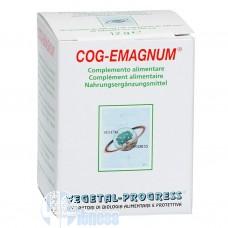 VEGETAL PROGRESS COG-EMAGNUM 60 TAV