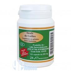 VEGETAL PROGRESS OEUFS DE CAILLES - UOVA DI QUAGLIA LIOFILIZZATE 120 CPS