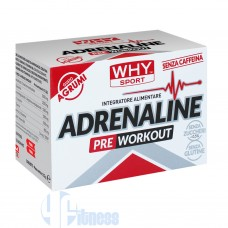 WHY SPORT ADRENALINE 10 BUSTE